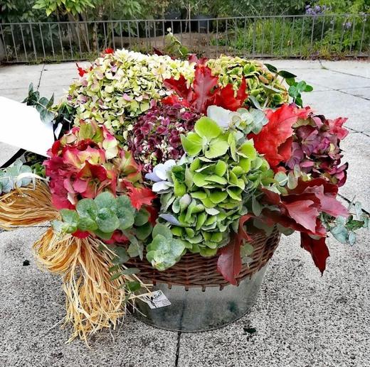 Flores Pili Bernabeu