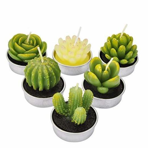 LA BELLEFÉE - Velas Cactus