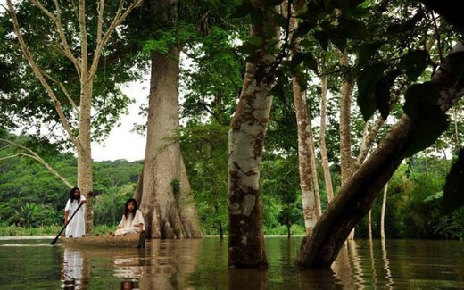 Selva La Candona