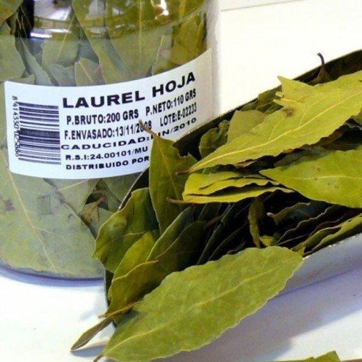 Laurel en hojas