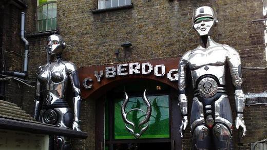 Cyberdog