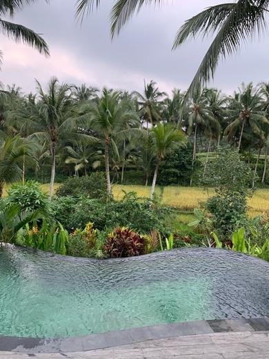 Calma Ubud ( Suite & Villas)