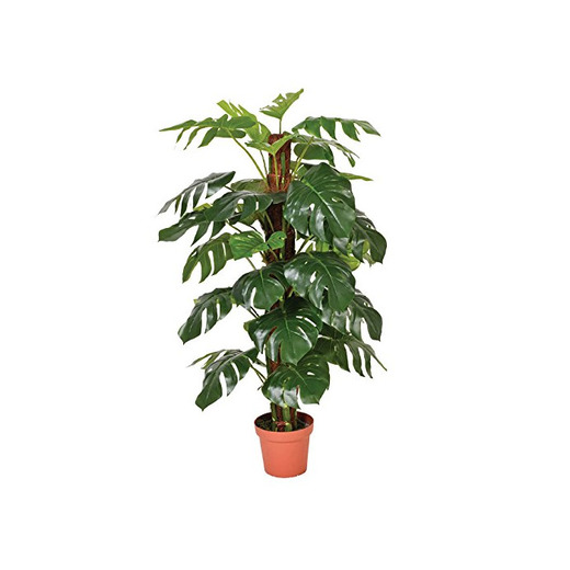 Catral 74010020 Planta artificial Monstera