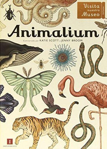 Animalium (El chico amarillo)