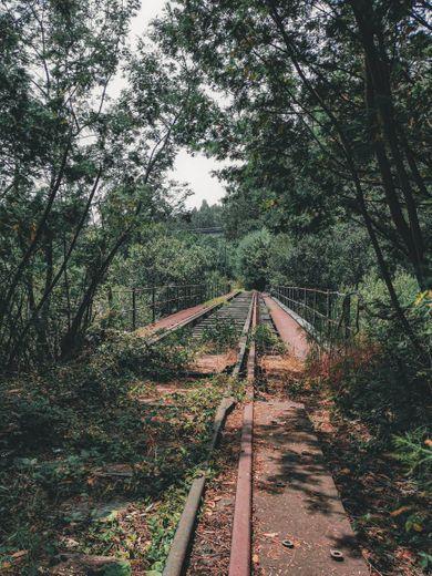 Puente ferrocarril Caldas de Reis