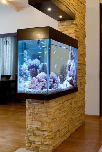 Móvel aquário ✨