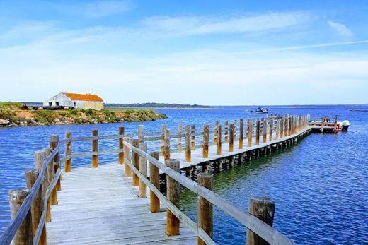 Reserva natural del Estuario del Sado