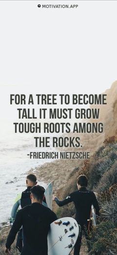 For a tree to become tall it must grow tough roots among the