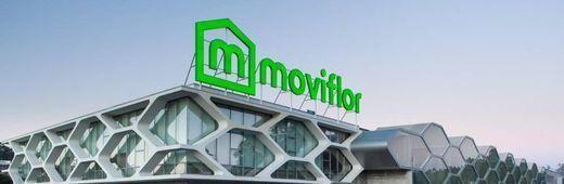 Moviflor Aveiro