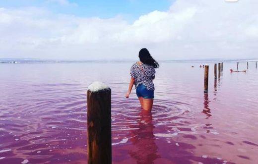 Salinas De Torrevieja