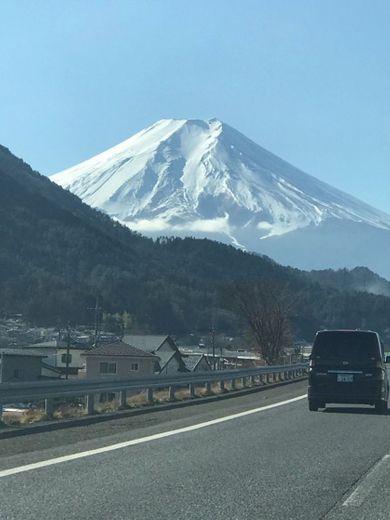 🧳VIAJE A JAPON