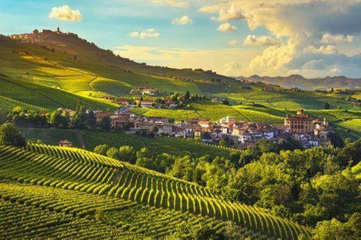 Vineyard Landscape of Piedmont: Langhe-Roero and Monferrato