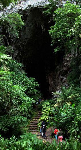 Parque Nacional El Guácharo