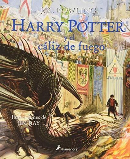 Harry Potter y el cáliz de fuego: 4