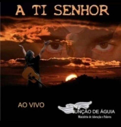 UNÇÃO DE ÁGUIA - CD /DVD A TI SENHOR