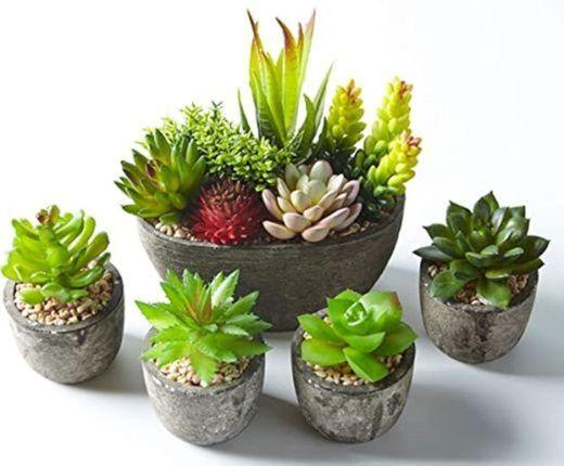 GoMaihe Plantas Suculentas Artificiales