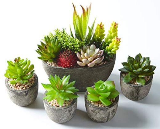 Jobary 5pcs Plantas Suculentas Artificiales Falso Plantas Decorativas Suculentas,Ideal para el Hogar