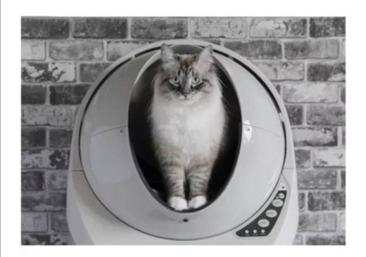 Limpiador automático de popo para gato