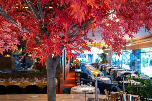 Don Lay Restaurante