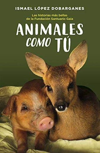 Animales como tú: Las historias más bellas de la Fundación Santuario Gaia