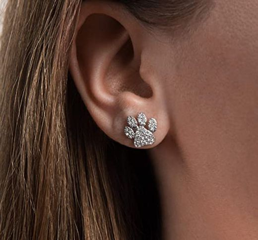 Paw Print Earrings – Pet and Dog Lover Gift - Amazon.ca