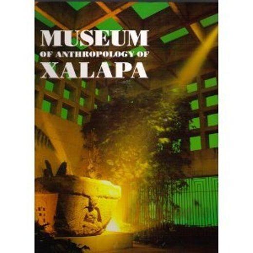 Museum Antropology Xalapa Universidad Veracruzana 9687153199
