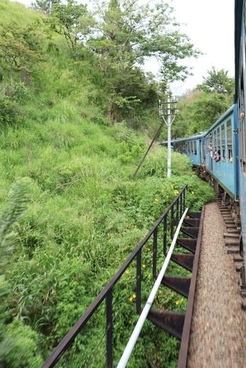 Lo mejor de Sri Lanka: tren Nuwara Eliya a Ella - magazinespain.com