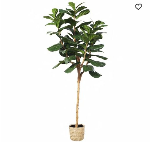 Ficus artificial con maceta trenzada LYRATA | Maisons du Monde