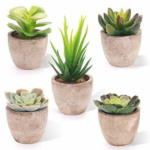EEKONG Plantas Artificiales Suculentas Plásticas Flor pequeñas en Maceta para decoración del